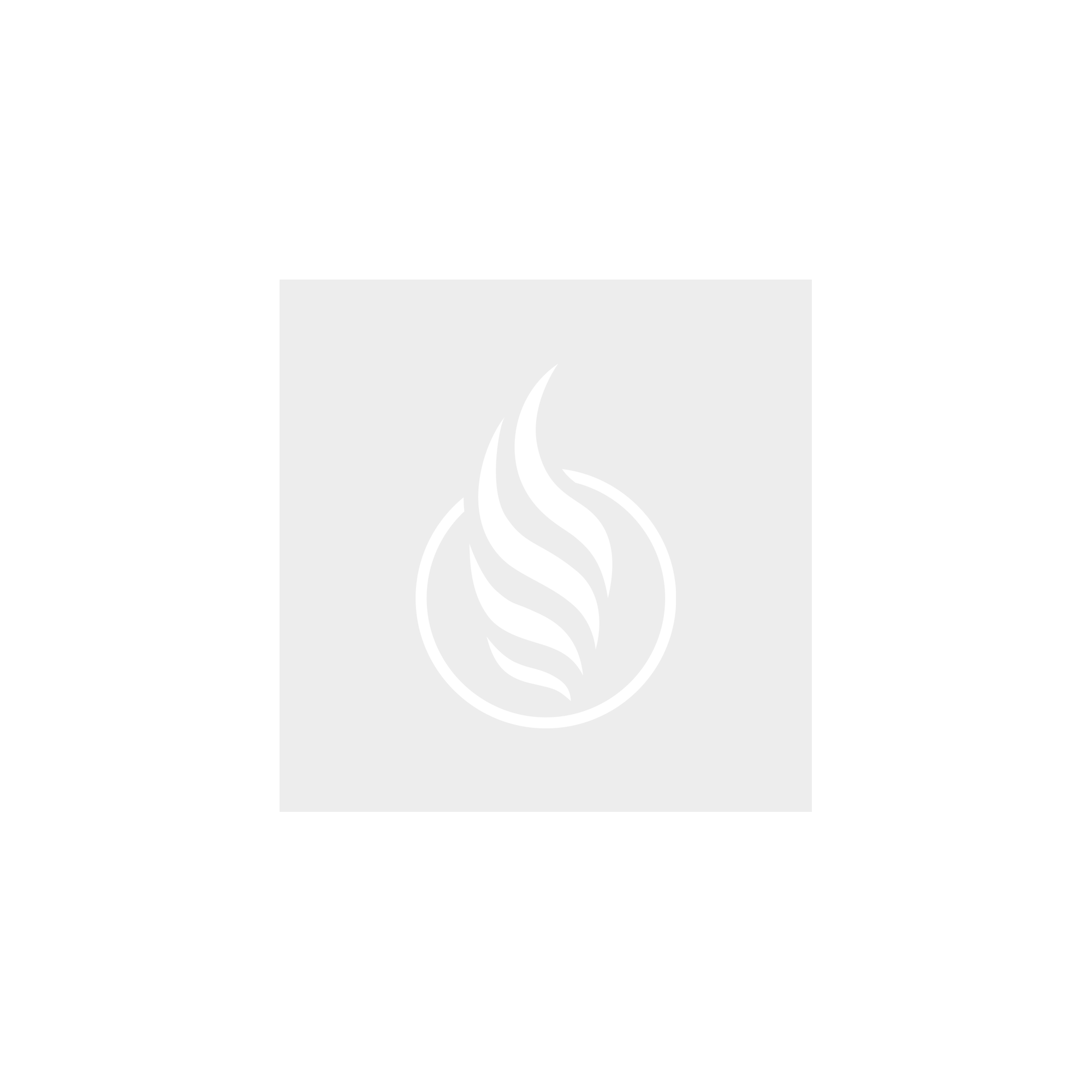 Argus Air Replacement Pod - 2 Pack [2ml]